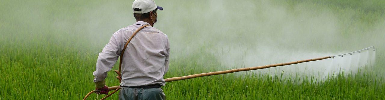 農薬&添加物を減らす方法